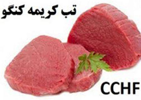 هشدار در خصوص بیماری تب خونریزی دهنده کریمه کنگو ( CCHF )