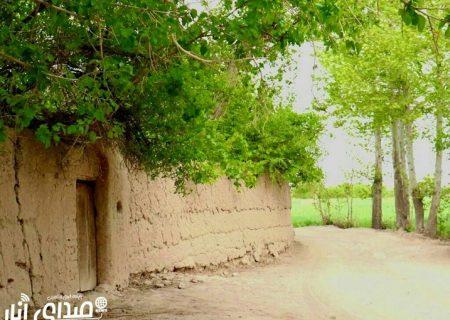 تصاویر زیبای بهاری از دریچه دوربین عکاسان صدای انار(سری دوم)