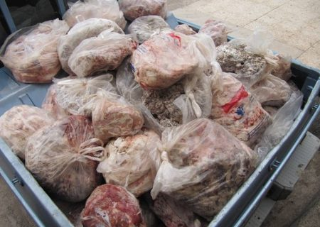 معدوم سازی بیش از ۴۸۰ کیلوگرم فرآورده های خام دامی در شهرستان انار